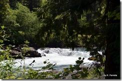Deadline Falls, N Umpqua River