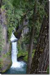 Toketee Falls, N Umpqua river