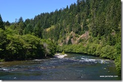 Down stream Umpqua River