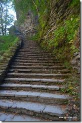 800 steps