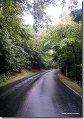 Roadway in Acadia