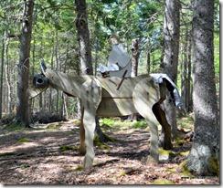 Sir Gawain on War Horse