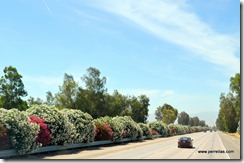 Favorite part of freeways