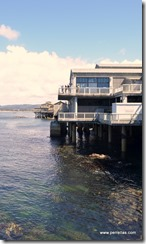 Monterey revived factory docks