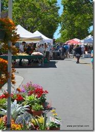 Santa Clara Farmers Market