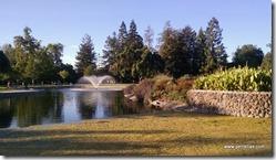 Santa Clara Park pond