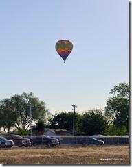 multi color balloon