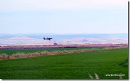 Crop dusting rice fields
