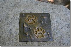 Yosemite paw prints
