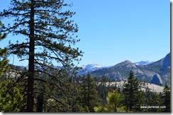 Yosemite range