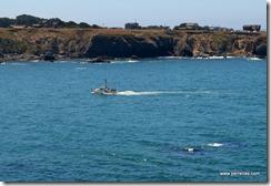 Fishing Boat in Noyo Bay