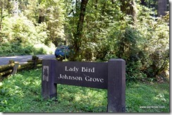 Lady Bird Johnson Grove