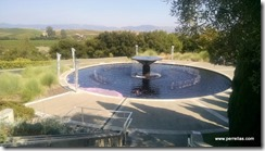 Artesa Winery fountain