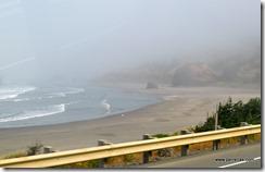 Fogy coastal view